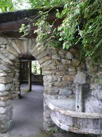 La Jaÿsinia Alpine Botanical Garden