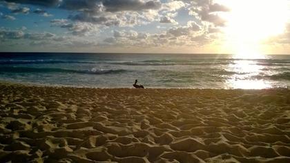 Cancún al amanecer