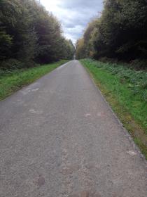 Forêt d'Eawy - Route Forestière Bully / Saint-Saëns