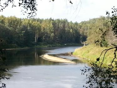 der Fluss Gauja