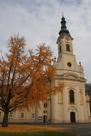 Požega, cathedrale Ste.-Therese d'Avila (Sv. Terezija Avilska)