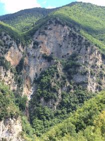 Forêt du Turini