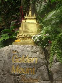 La montage d'or