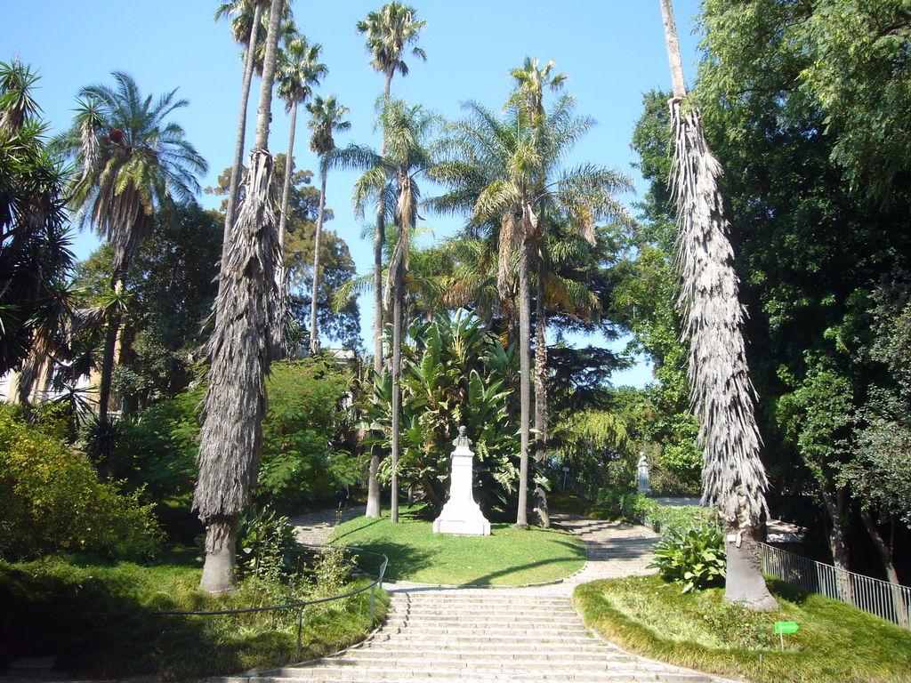 Jard n bot nico turismo lisboa viamichelin for Restaurante jardin botanico