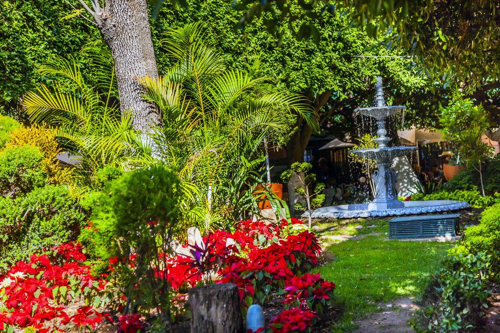 Jard n uni n turismo guanajuato viamichelin for 7 jardines guanajuato