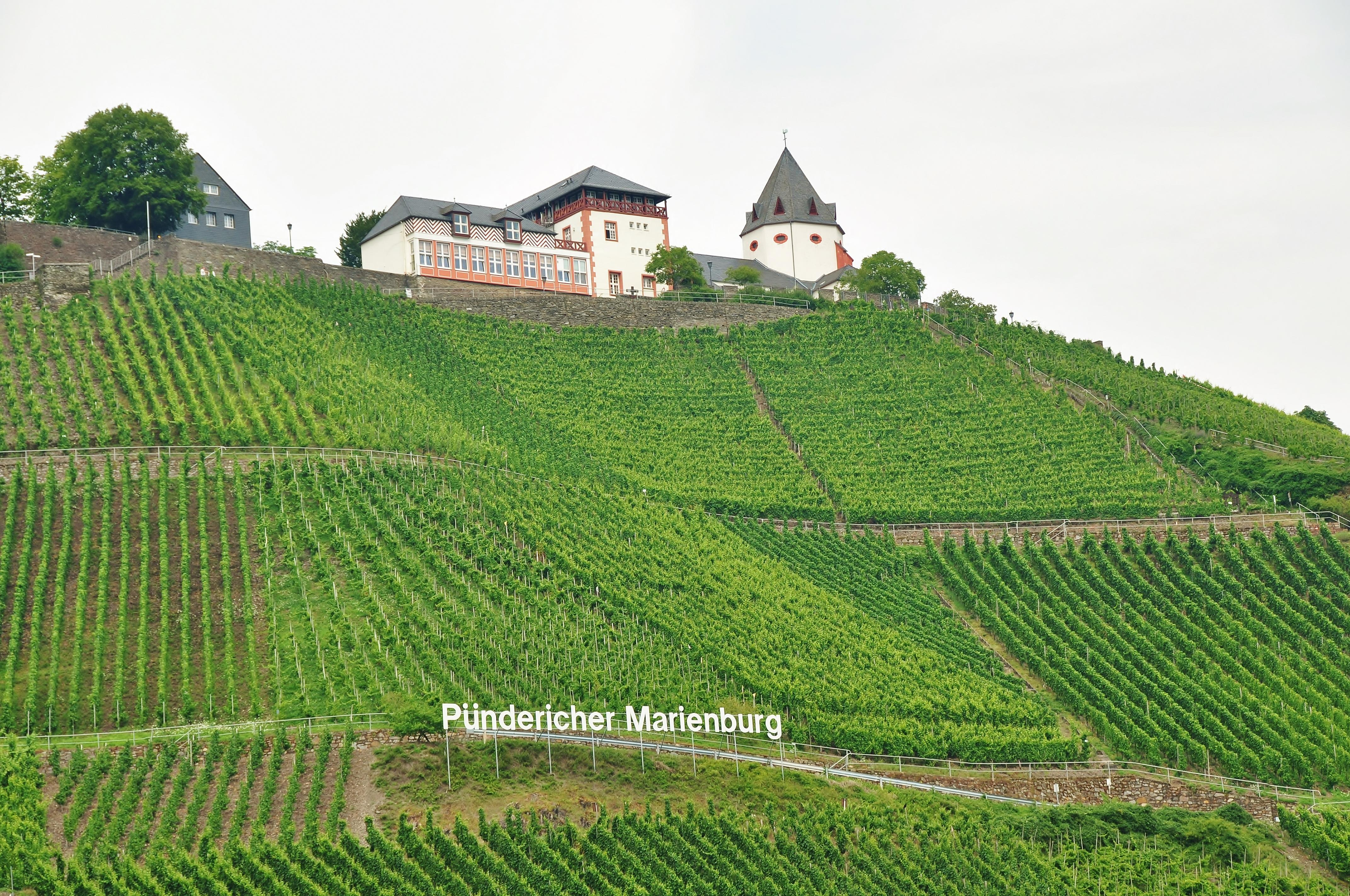 Hotel Zur Post Zell Mosel