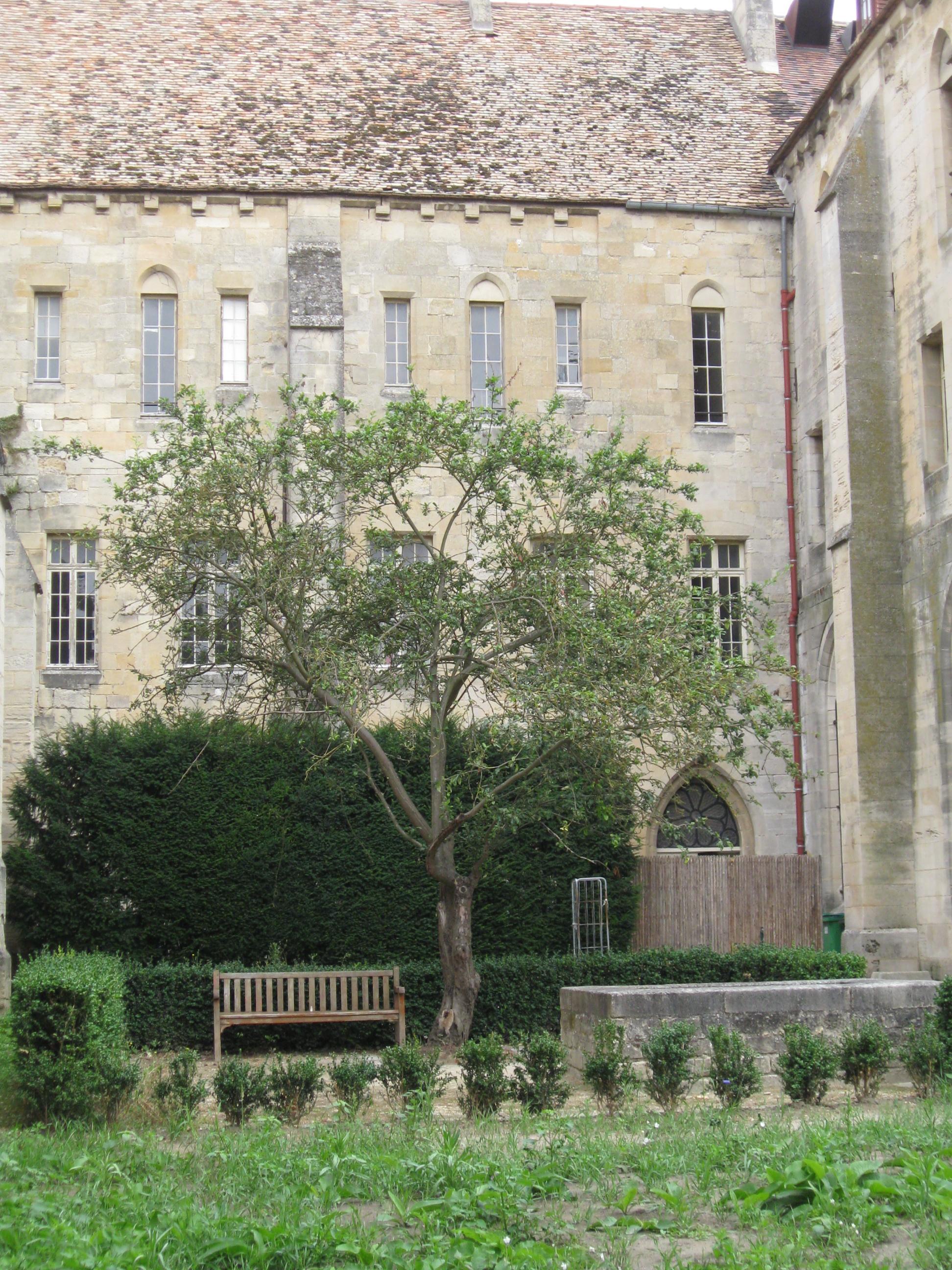 abbaye de royaumont tourismus asni res sur oise viamichelin. Black Bedroom Furniture Sets. Home Design Ideas